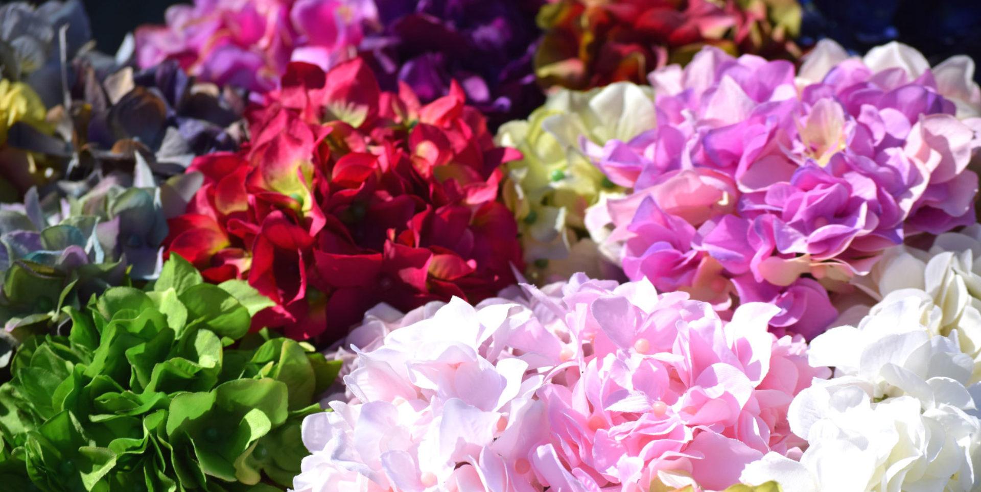 オクト展示場 | 九州・熊本の花材販売・卸売問屋|東京堂正規代理店